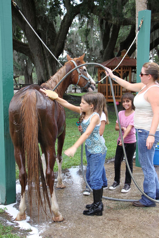 horse-camps-central-florida-1