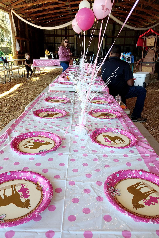 pony-parties-birthday-orlando-1