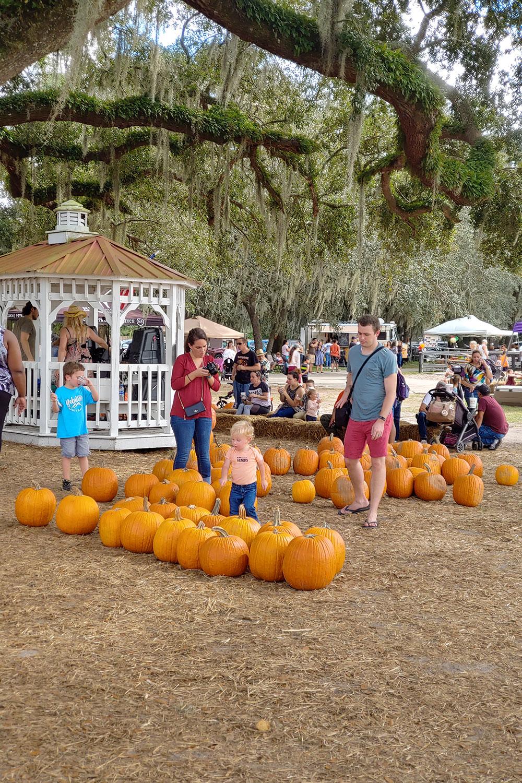 pumpkin-patch-festival-orlando-fl-2